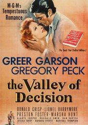Постер Долина решимости