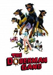 Постер Банда доберманов