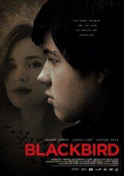 Постер Черный дрозд