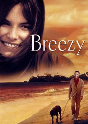 Постер Бризи