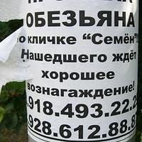 Фото Lyudmilkin Туровцева