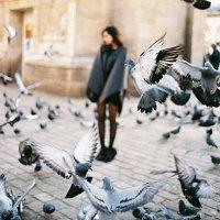 Фото Алина Волкова