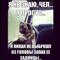 Фото Егор Воробьёв