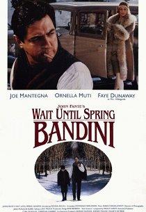 Жди до весны, Бандини