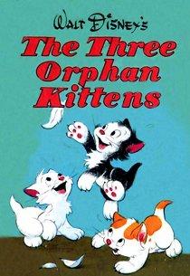 Три котеночка-сиротки