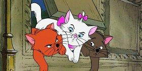 «Питер Пэн», «Дамбо», «Коты-аристократы»: Disney+ будет предупреждать зрителей о «негативном изображении культур» в мультфильмах