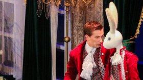 Винни-Пух или кролик Эдвард: чем заняться в выходные с детьми