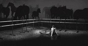 «История лошади»