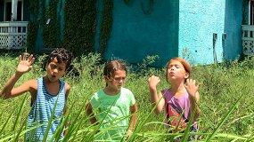 «Проект Флорида»: инди-хит о жизни на пороге Диснейленда