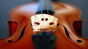 Планета скрипки