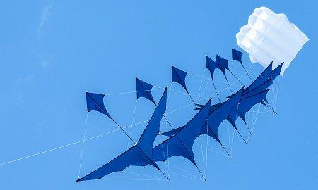 Бои на воздушных змеях и мастерская анимации: чем заняться в выходные с детьми