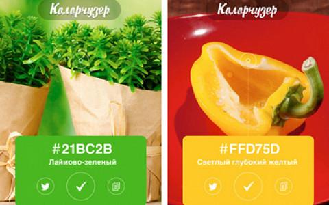 Mailbox, почта Шредингера, френдлента в инстаграме, Colorchuzer, SayWhat и Letterpress по-русски
