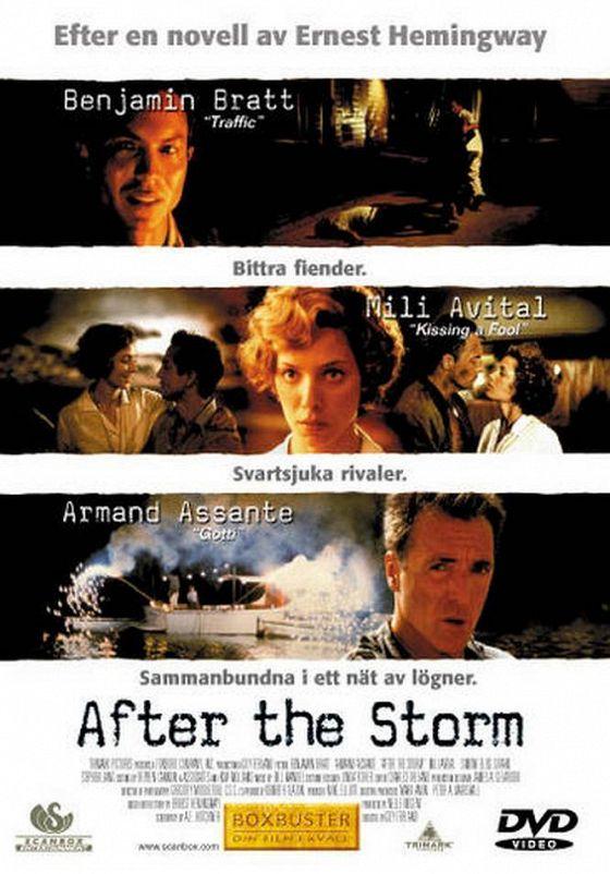 После бури (After the Storm)
