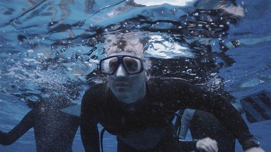 Открытое море: Новые жертвы (The Reef)