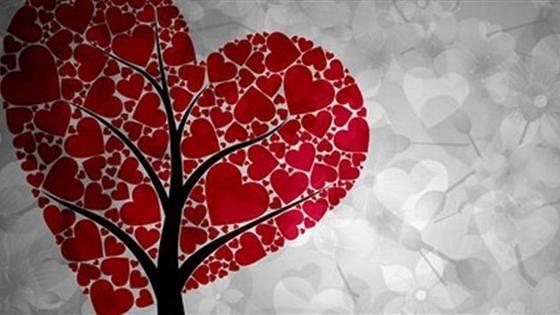 Любовь вопреки