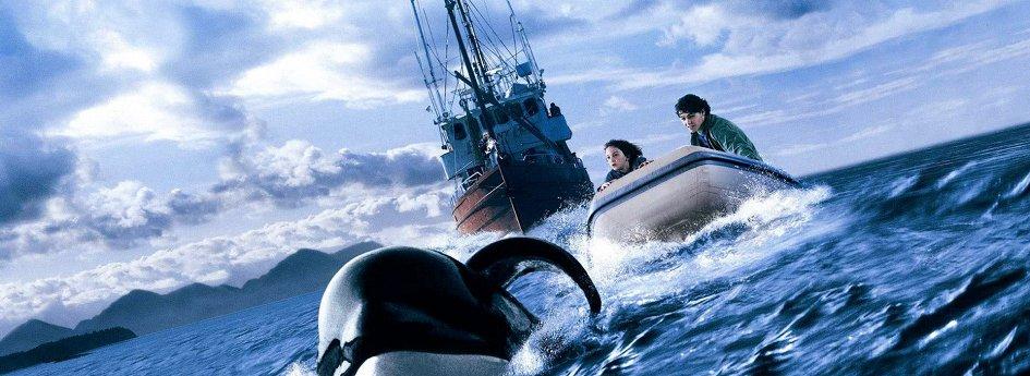 Кино: «Освободите Вилли-3: Спасение»