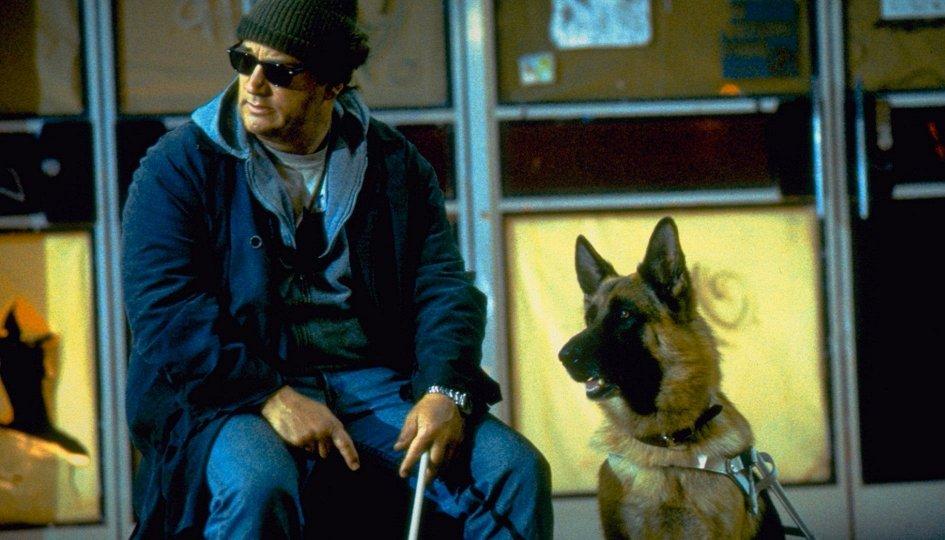 Кино: «К-9: Собачья работа-3»