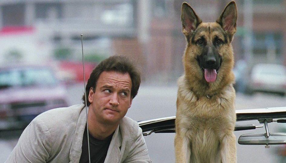 Смотреть онлайн к911 собачья работа 2 самые доходные советники в форексе