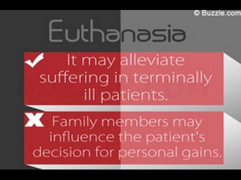 Pro euthanasia thesis