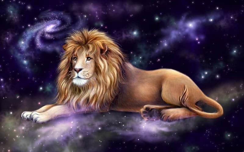 Гороскоп   ноябрь льва женщины