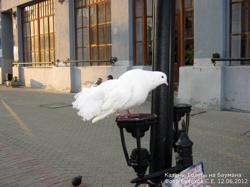 Вообще же, всем прибывшим в Казань, я советую посетить улицу