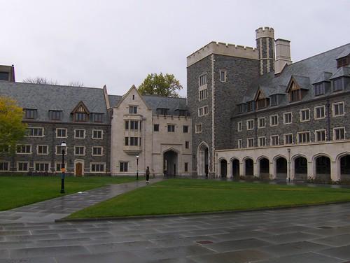 Princeton review college essay creative writing tucson az