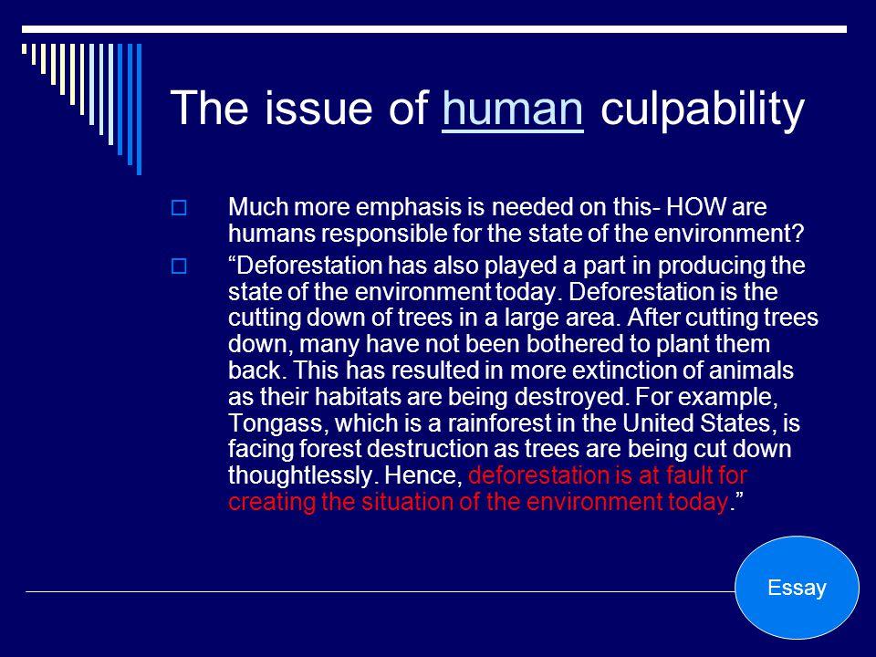 Environment persuasive essay
