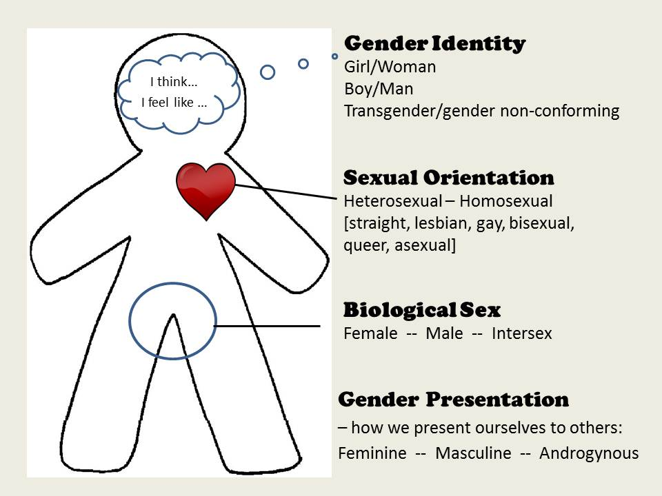 defining sexual orientation What does sexual orientation mean sexual orientation meaning - sexual orientation sexual orientation is an enduring pattern of romantic or sexual attraction (or a.