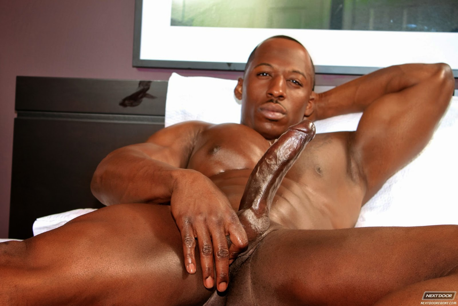 Gay black hung dicks