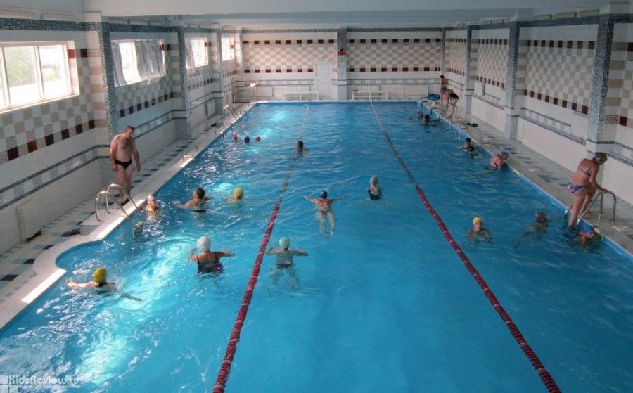 бассейн для детей от 3 мес. спб кировский район