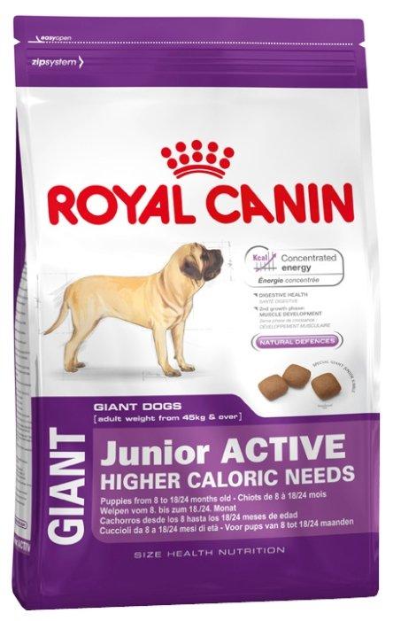 Рейтинг корма корм royal canin