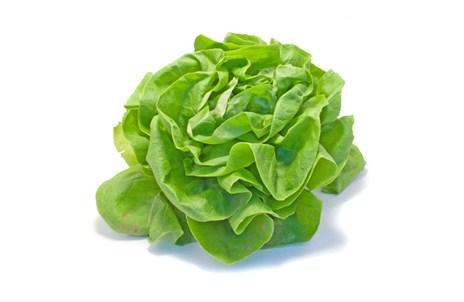 фото салат зеленый