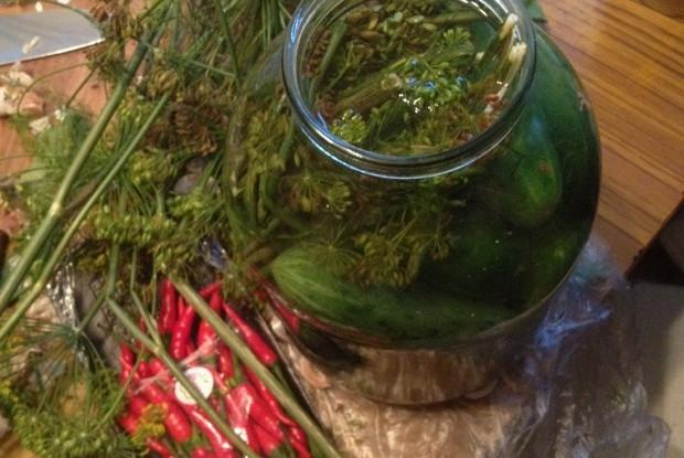 Соленые огурцы с эстрагоном и листьями