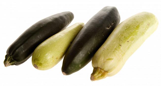 Кабачки обычные и кабачки цукини