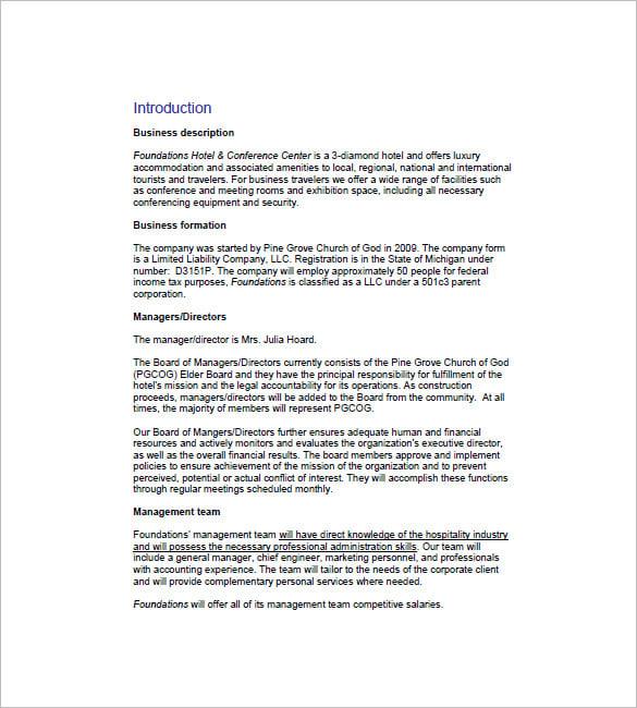 Business plan essay free